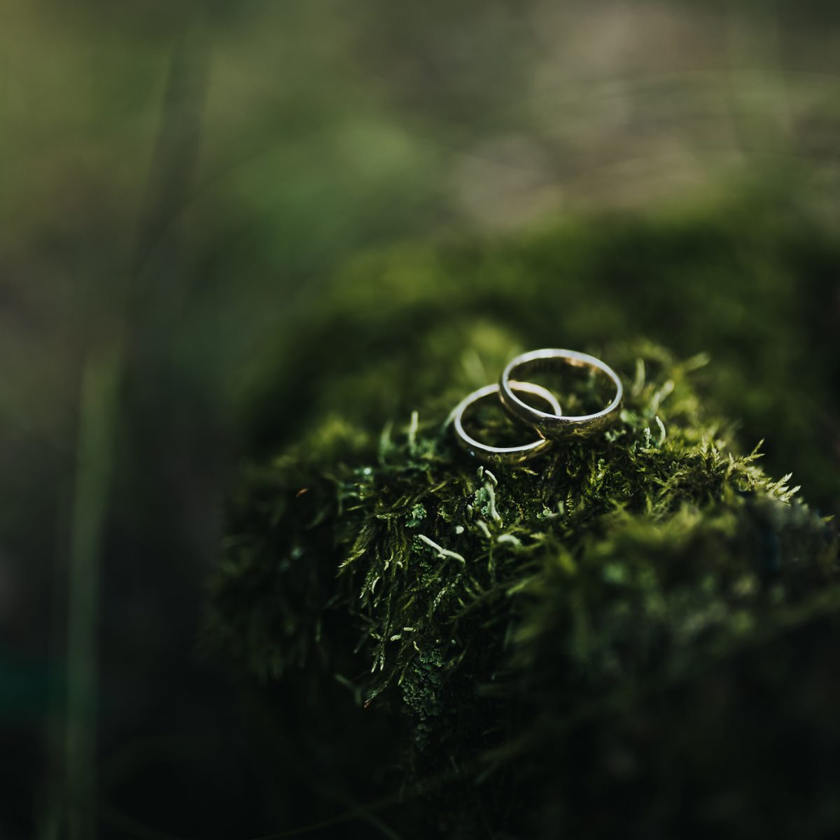 Karolina i Dawid - plener ślubny -web size (17)